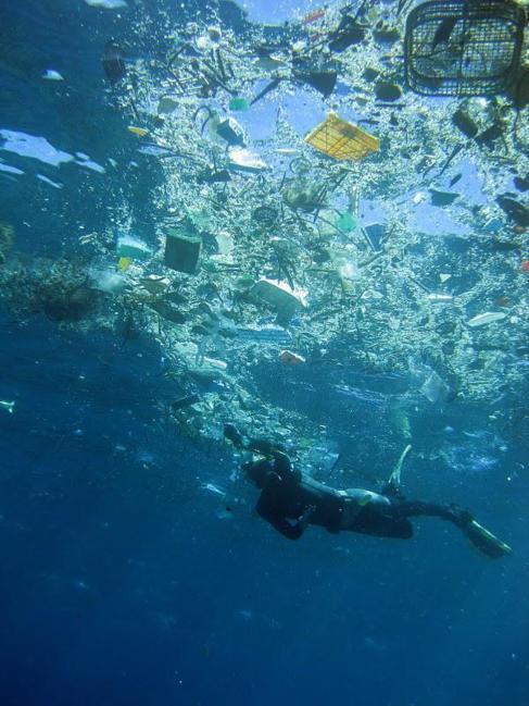 Пластиковый мусор в заливе Ханауна, Гавайи, США